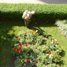 Por qué contratar un jardinero en tu comunidad